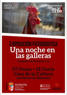 Los Santos de Maimona acoge la exposición `Una noche en las galleras´ del fotógrafo Bernardo Cruz