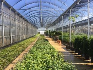 El programa colaborativo rural `Valencia Ecoactiva´ reanuda el proceso de selección de participantes