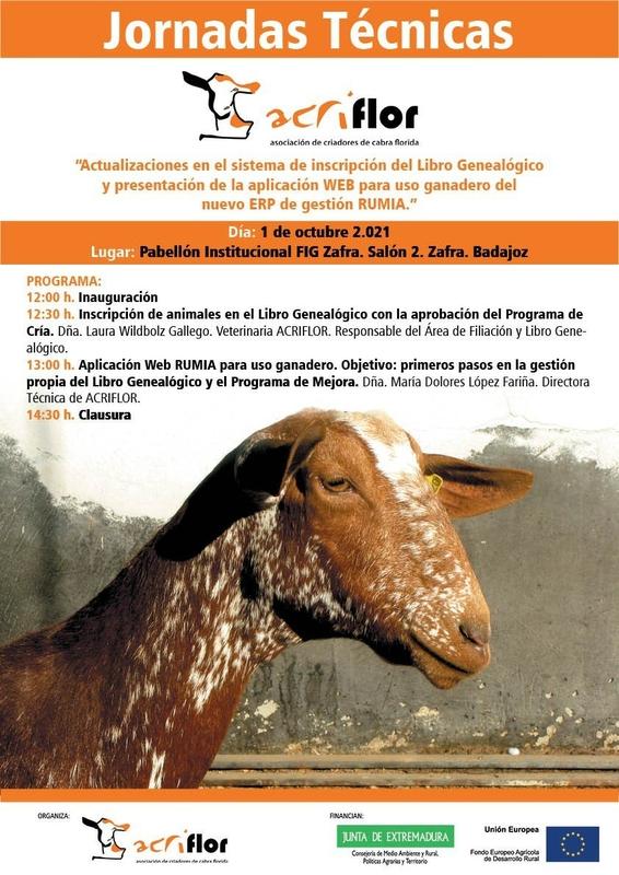 La Asociación de Criadores de Cabra Florida organiza en Zafra una jornada técnica sobre el libro genealógico