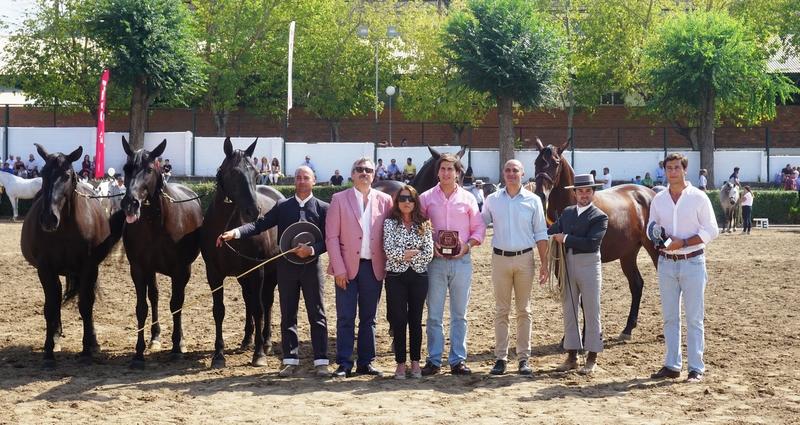 La ganadería de Fernando Heras obtiene los primeros premios en machos y hembras de la raza Limusin