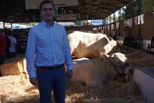 Un ejemplar del ganadero Mariano de Diego Hernández, se ha proclamado Supercampeón del Concurso Nacional de Ganado Charolés de la Feria de Zafra