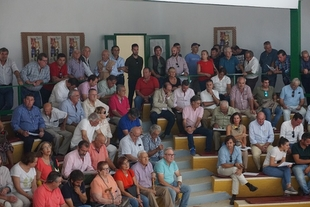 Las subastas de vacuno de la Feria de Zafra alcanzan un remate cercano a los 94.000 euros